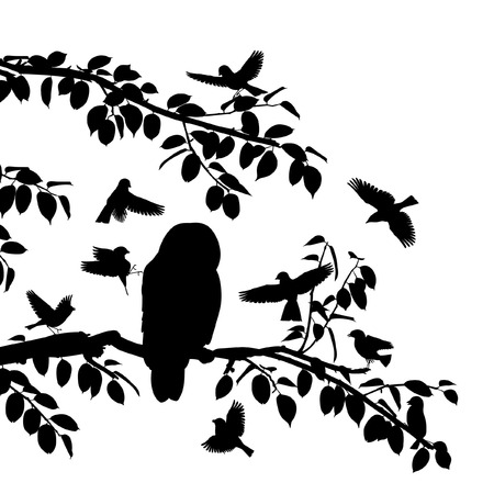owl vector: Editable vector silhouettes of songbirds mobbing an owl with all birds as separate objects