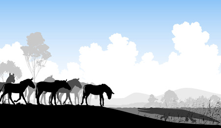Editable vector illustration of a herd of zebra or ponies at a watering hole with a waiting crocodile Illustration