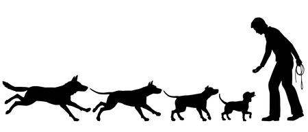 domestication:  silhouettes illustrating the domestication of dog from wolf