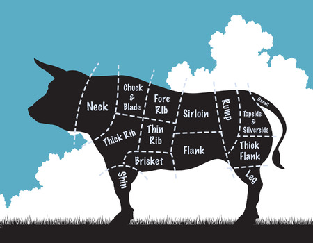 beef cuts: illustration of a cow silhouette showing the cuts of meat Illustration