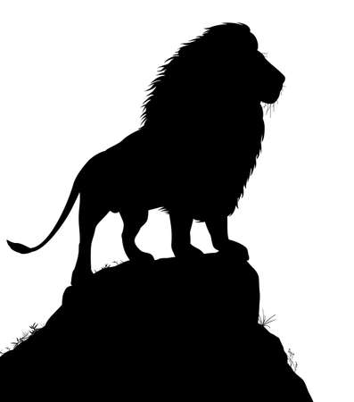 watchful: Editable silhouette of a male lion standing on a rocky outcrop with lion as a separate object Illustration