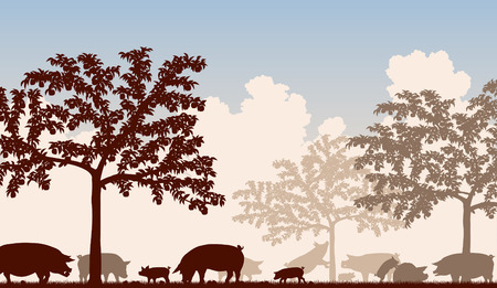 welfare plant: Editable vector illustration of free-range pigs feeding under fruit trees with all figures as separate objects