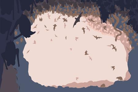 groty: Ilustracja zwierząt w jaskini nietoperzy ze wszystkie dane jako oddzielne obiekty