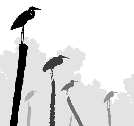 egret: Editable vector illustration of egret silhouettes perched on poles with birds as separate objects