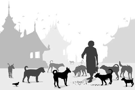 devanear: Editable do vetor de uma mulher que alimenta cães vadios em um templo budista, onde muitos animais abandonados acabam Ilustração