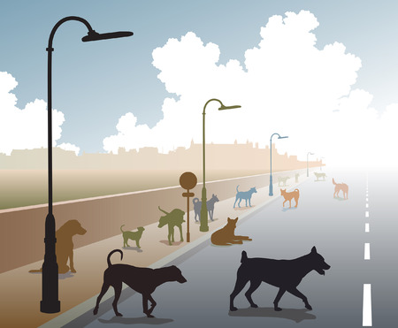 cur: Editable vector illustration of a motley group of stray dogs on a lonely road