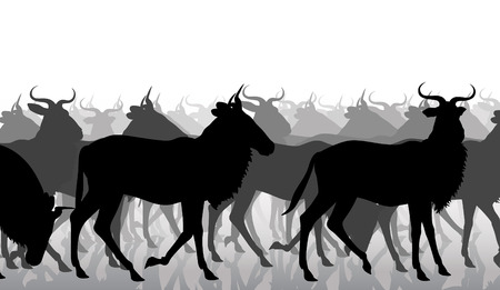 herd: EPS8 editable vector cutout illustration of a herd of adult wildebeest