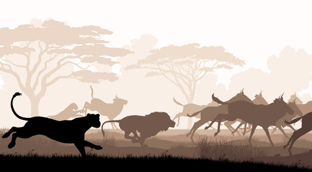 herd: EPS8 editable vector cutout illustration of lions chasing a herd of wildebeest with all figures as separate objects Illustration