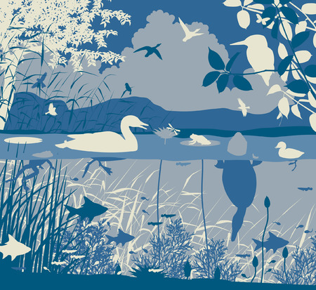 ecosystem: EPS8 editable vector illustration of diverse wildlife in a freshwater ecosystem with all figures as separate objects