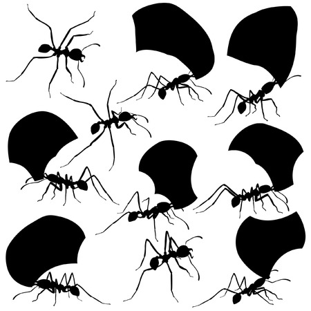 Set of editable vector silhouettes of leaf cutter ants with all leaf fragments and ants as separate objects Illustration