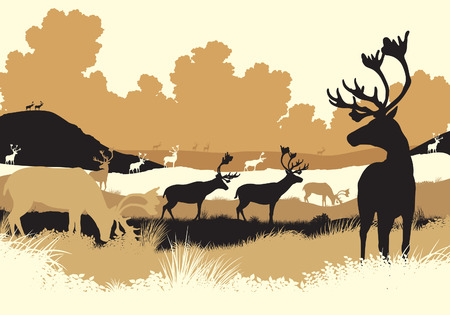 editable illustration of reindeer or caribou moving across a tundra landscape with all figures as separate objects Illustration