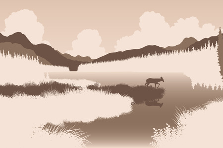 lakeside: EPS8 editable vector illustration of a deer in a wild landscape with the animal as a separate object