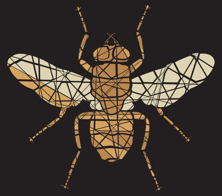 housefly: Editable vector shattered mosaic illustration of a fly Illustration