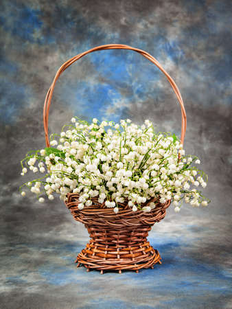 Beautiful  lily of the valley in a basket on the table photo