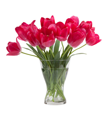 tulips isolated on white background: Bouquet of tulips in glass vase isolated on white background