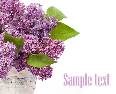 glass vase: Lilacs in a glass vase