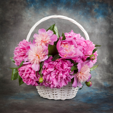 Beautiful bouquet of flowers - peonies. Dramatic light photo