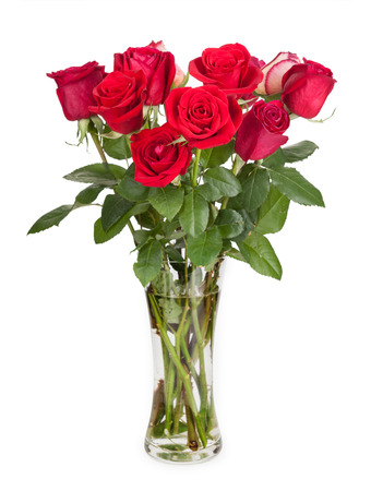 roses in vase: Roses in a glass vase isolated on white background.