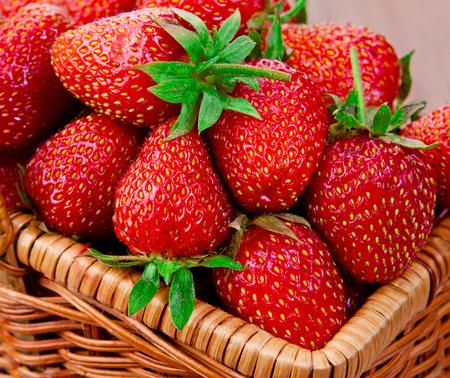 canasta de frutas: Fresas rojas maduras en una cesta. acercamiento.