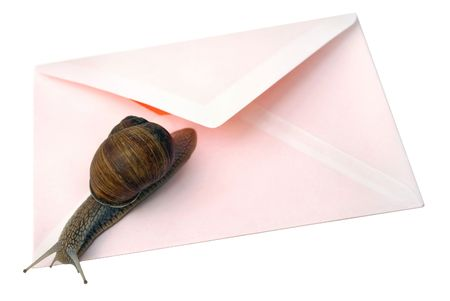 addressed: Isolated photo of snail and envelope