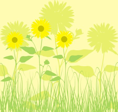 Background with sunflowers photo