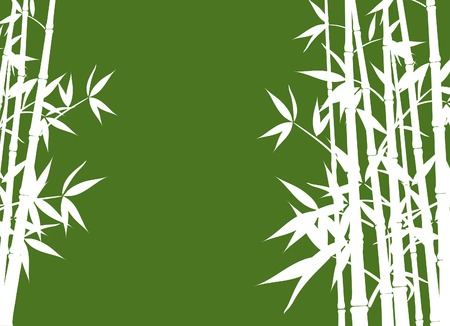 Bamboo, vector illustration Vector