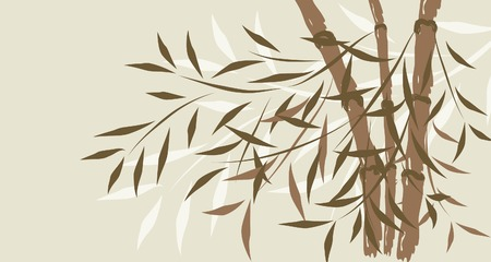 Bamboo background, vector illustration Vector