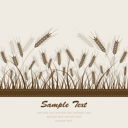 wheat illustration: Sfondo astratta di grano