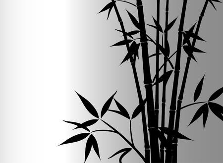 bamboo tree: Bamboo background, vector illustration