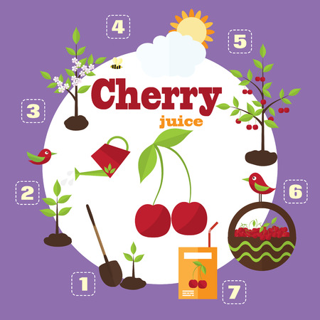 cherry trees: Vector illustration of a garden in the style of the flat. Planting cherry trees, harvesting, processing cherries in juice. Illustration