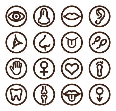 semen: Medical line icon set for web and mobile. Set includes- tooth, eye, ear, hand, bone,  lips, tongue. Illustration
