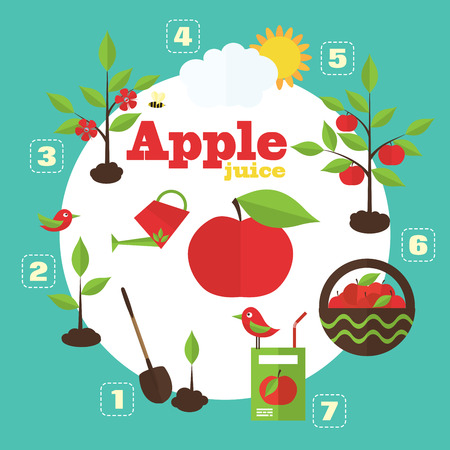 planting: Vector garden illustration in flat style. Planting apple trees, harvesting, processing apples into juice.