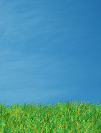 background image of lush green grass and warm blue sky