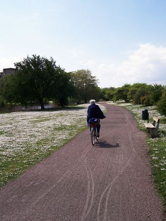 An elderly lady cycling through the park Stock Photo