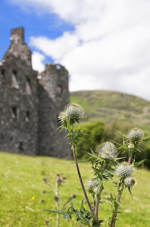 A bunch of thistles in focus with blurred castle ruin in the background makes this image very symbolic of the national flower of Scotland. photo