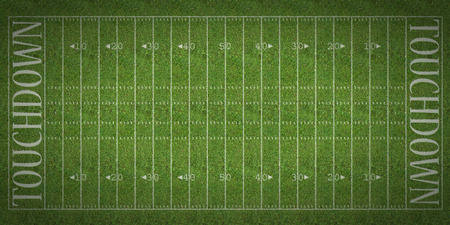 touchdown: An overhead view of an american football field with white markings painted on grass.
