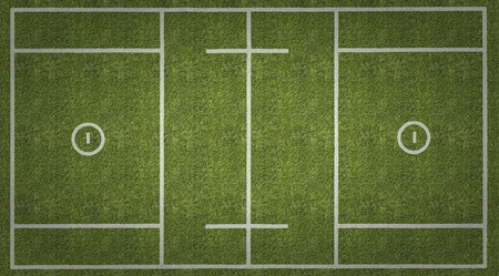 lax: An overhead view of a mens lacrosse playing field with white markings painted on grass.