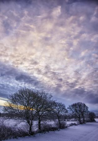 freshly fallen snow: Neve fresca giace a terra in campagna all'alba creare un paesaggio invernale.