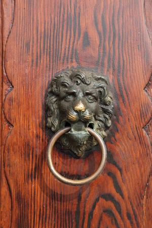 Bella Italia series  Venice - the Pearl of Italy  Door handle in the shape of a lion  Venice, Italy  photo