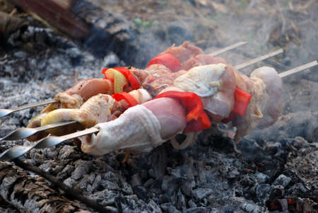 Cooking kebab on outdoor picnic Stock Photo - 3482061