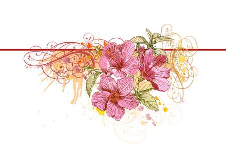 Hibiscus flowers, vintage calligraphy ornament & watercolor paint Illustration