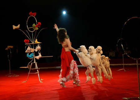 From February, 24 till February, 27th in Saratov passed second All-Russia festival-competition  photo