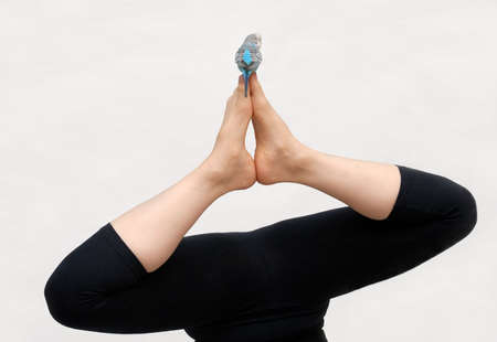 The woman is engaged in yoga easily and easy, and the wavy parrot tries to imitate it. photo