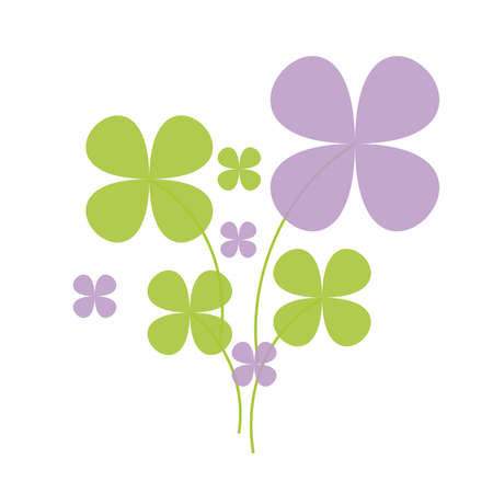 patrik background: Lucky green and lilac shamrock on white background