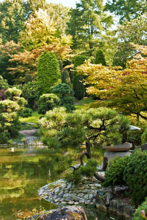 Japanese garden in early autumn, sunny and fresh