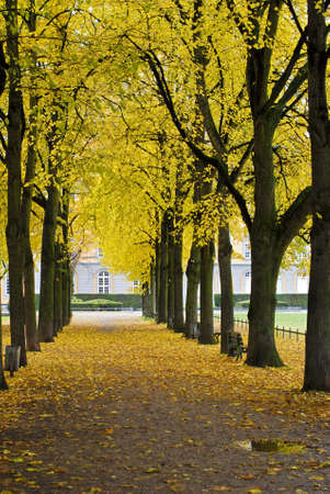Autumnal park in the center of Bonn, Germany photo