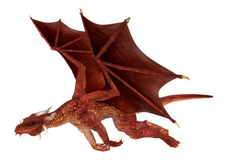 flying dragon: 3D digital render of a flying red fantasy dragon isolated on white background Stock Photo