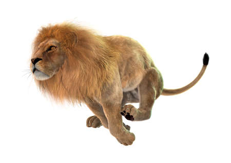 female lion: 3D digital render of a jumping male lion isolated on white background