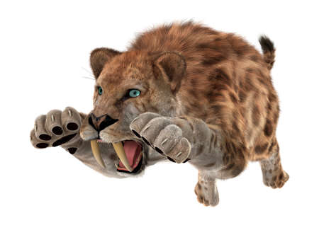 3D digital render of a jumping smilodon or a saber toothed cat isolated on white background photo