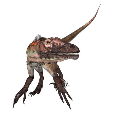 ancient creature: 3D digital render of a dinosaur utahraptor isolated on white background